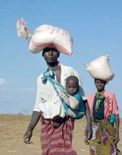 Zambian women carrying sacks of cereal distributed by the WFP Center, the World Food program, in Ngombe