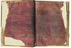 Latin Gospel book, Codex Palatinus 1589, ff. 43v-44r, end of the 5th century, Musei e collezioni provinciali, Castello del Buon Consiglio, Trent. The Purple Gospels of Trent offer an anti-Jeromian Latin text corresponding to a version of the Gospels known in Africa in the 3rd century that was used by Cyprian